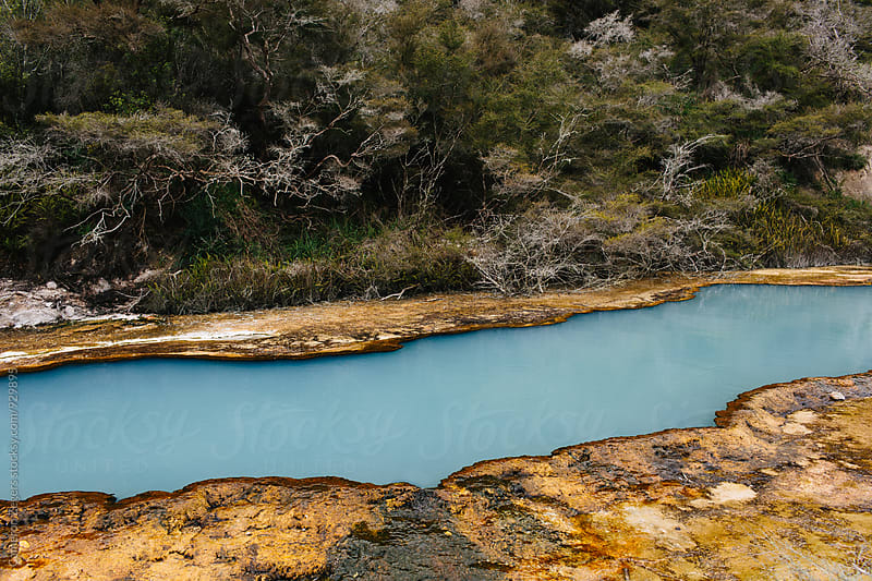 geothermal pool in New Zealand by Cameron Zegers for Stocksy United