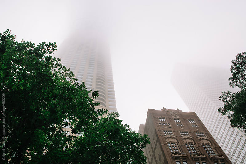 Skyscraper in Chicago on a foggy day by Gabriel (Gabi) Bucataru for Stocksy United