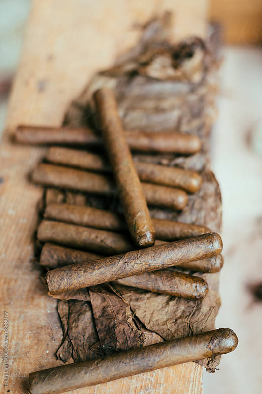 Close-up of pile of cuban cigars on tobacco leaf by Trent Lanz for Stocksy United