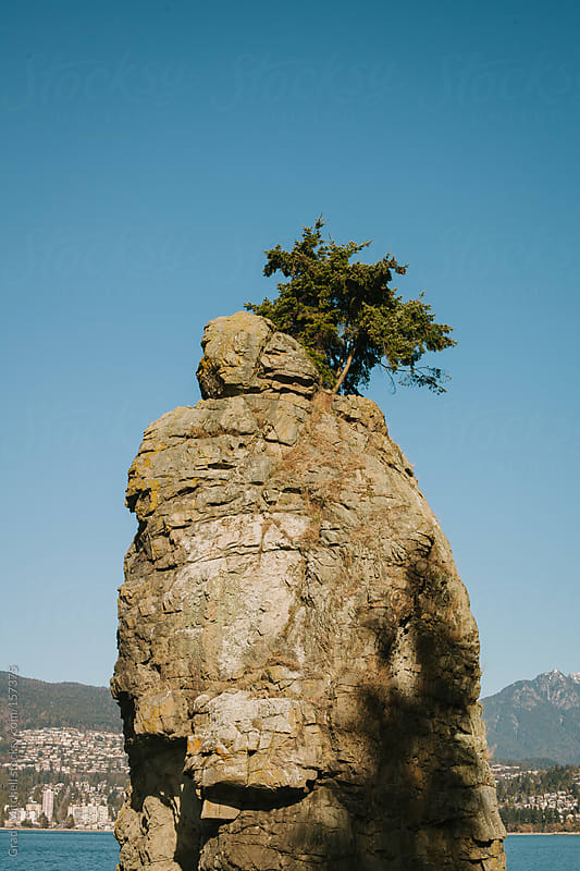 Tree Atop A Rock Spire by Grady Mitchell for Stocksy United