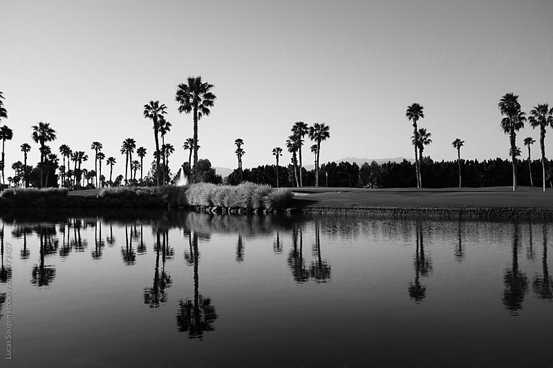 Morning over a man made pond in Palm Springs. by Lucas Saugen for Stocksy United