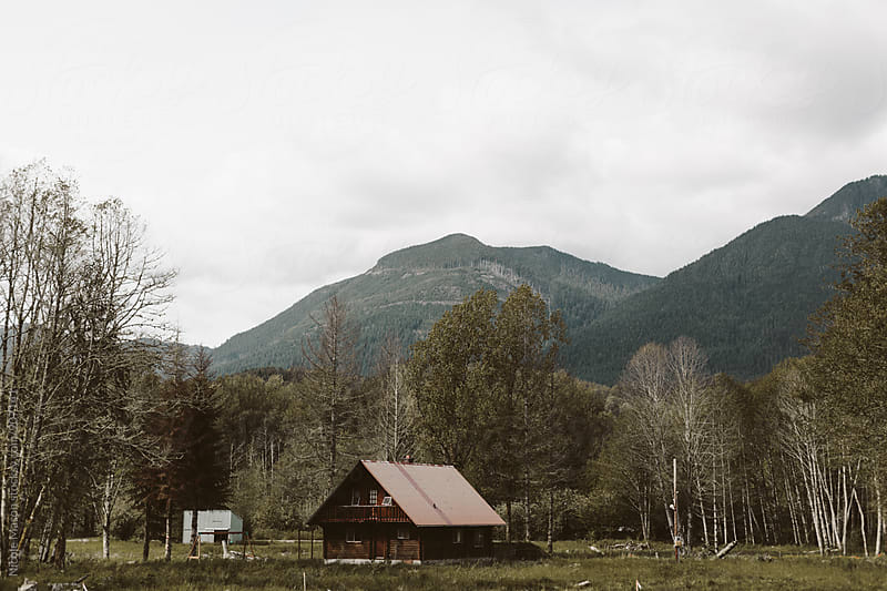 cabin in the woods in pacific northwest by Nicole Mason for Stocksy United