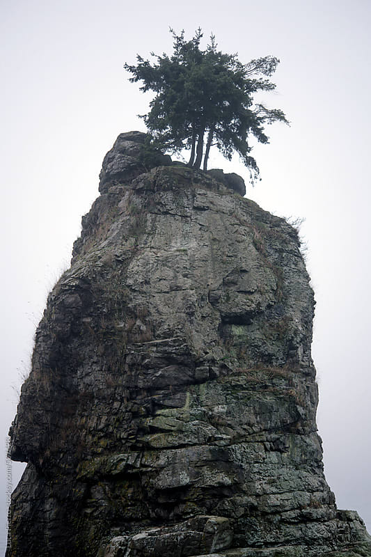 Siwash Rock in a foggy day, Vancouver, B.C. by Luca Pierro for Stocksy United