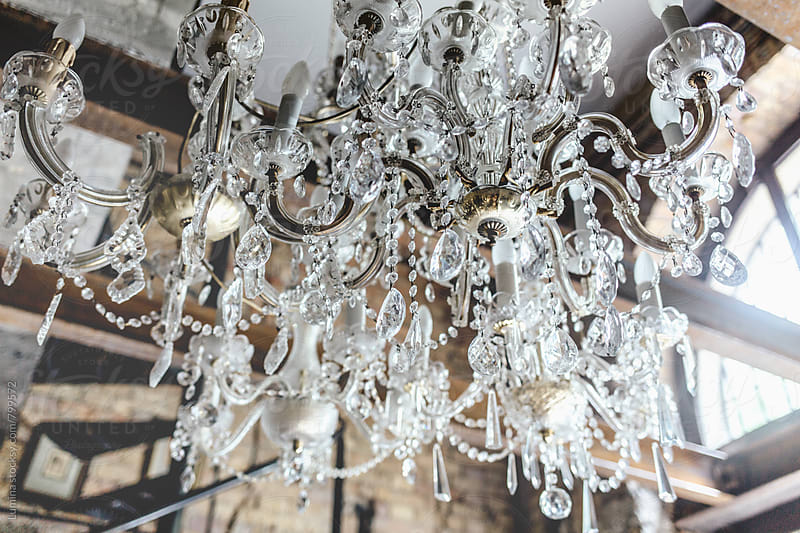 Crystal Chandelier in a Flower Shop by Lumina for Stocksy United