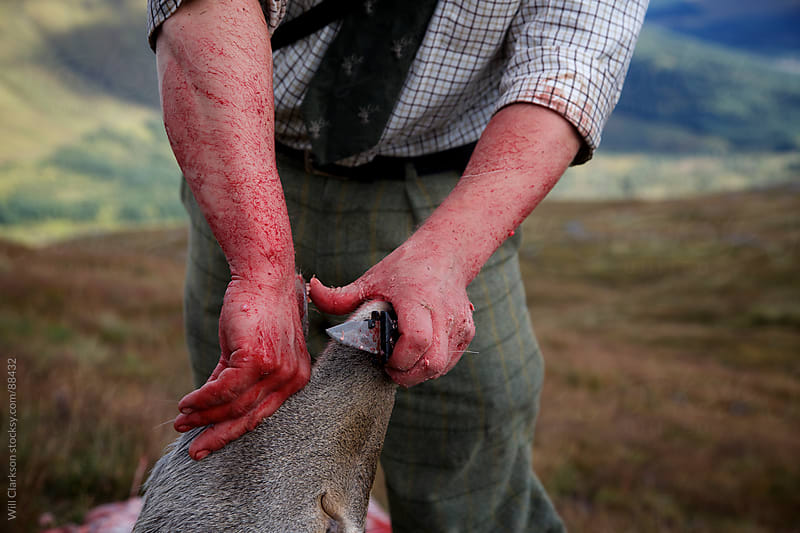 A stalker determines the age of a recently shot red deer stag by Will Clarkson for Stocksy United