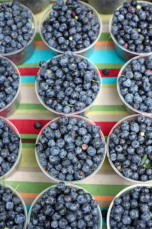 Many cups of wild, organic blueberries by Carolyn Lagattuta for Stocksy United