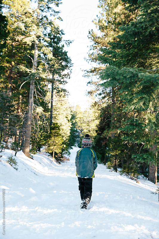 Boy walking through snowy woods by Curtis Kim for Stocksy United