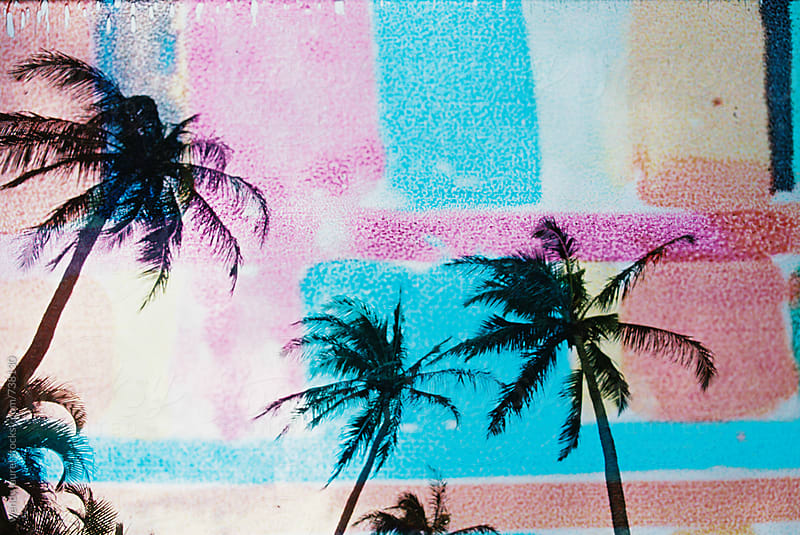 rainbow grid palm trees on film by wendy laurel for Stocksy United