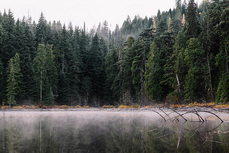 Fog on water on a calm lake by Justin Mullet for Stocksy United
