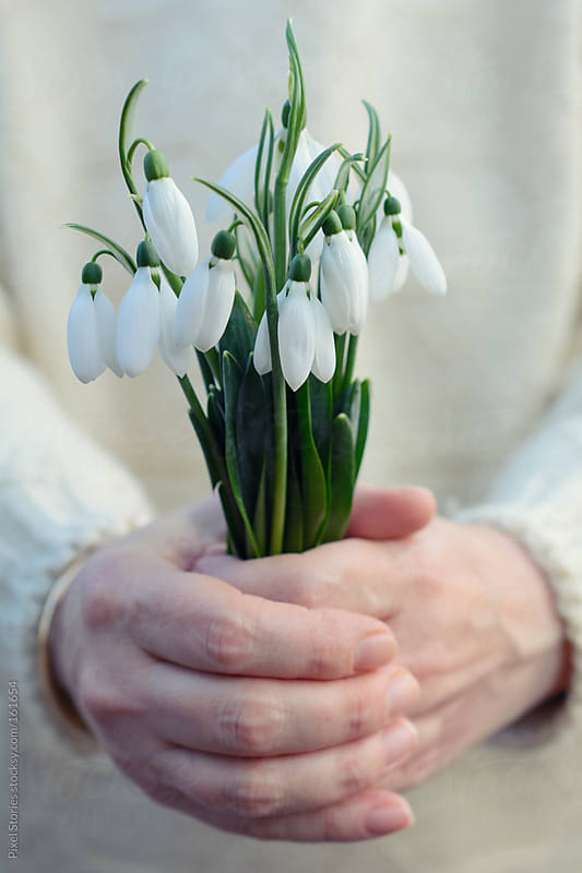 Woman holding snowdrops by Pixel Stories for Stocksy United