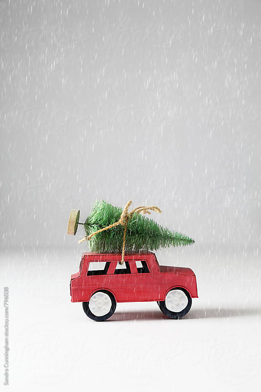 Toy car and Christmas tree by Sandra Cunningham for Stocksy United