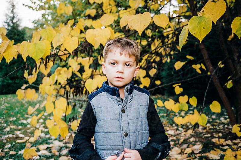 Boy portrait by Cameron Whitman for Stocksy United