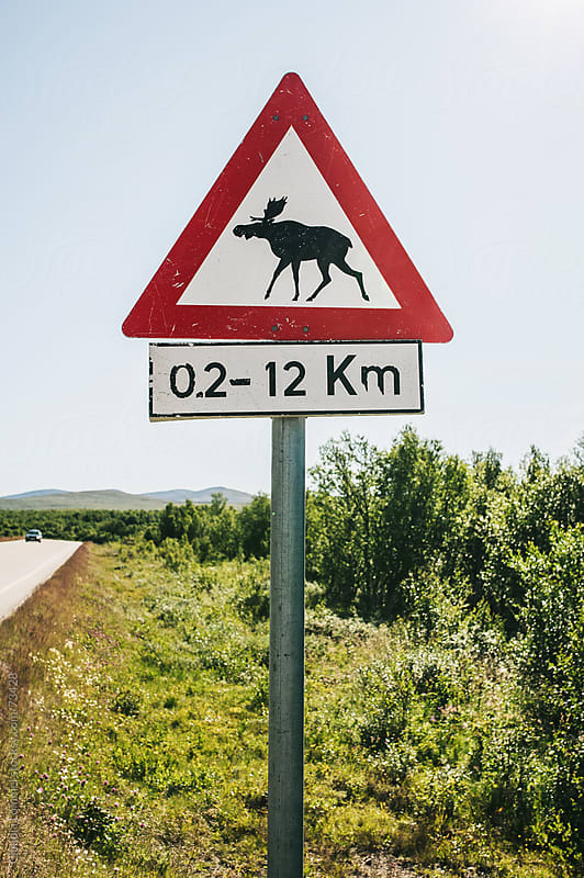 Moose warning sign in Norway, Scandinavia by Claudia Lommel for Stocksy United
