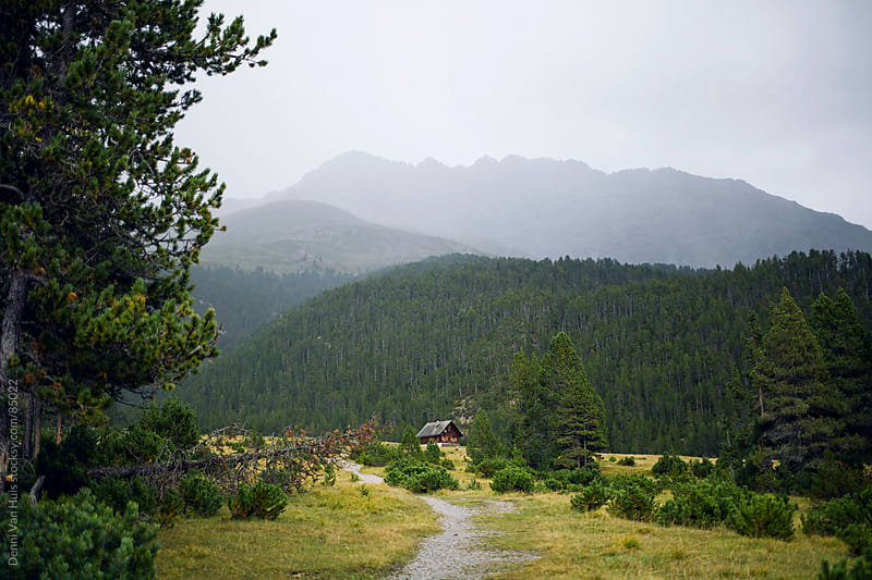 A path to a lonely wooden cabin up in the mountains on a rainy day by Denni Van Huis for Stocksy United