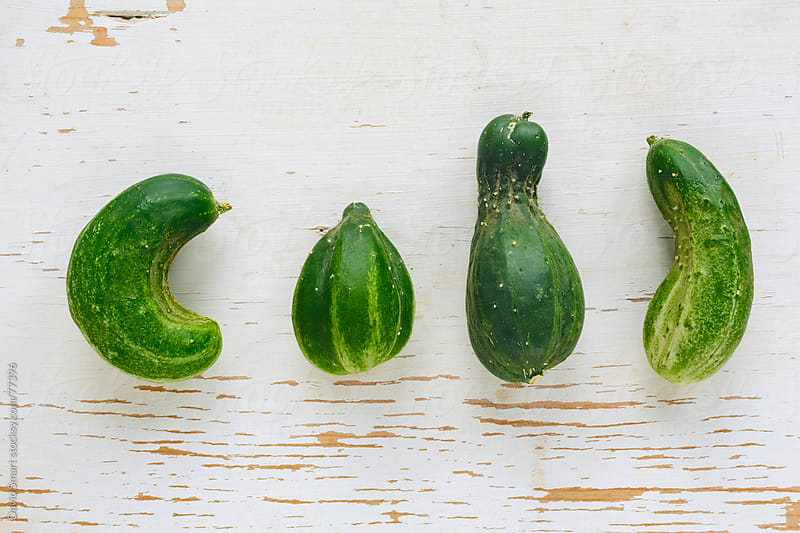 Misshapen organic cucumbers  by David Smart for Stocksy United