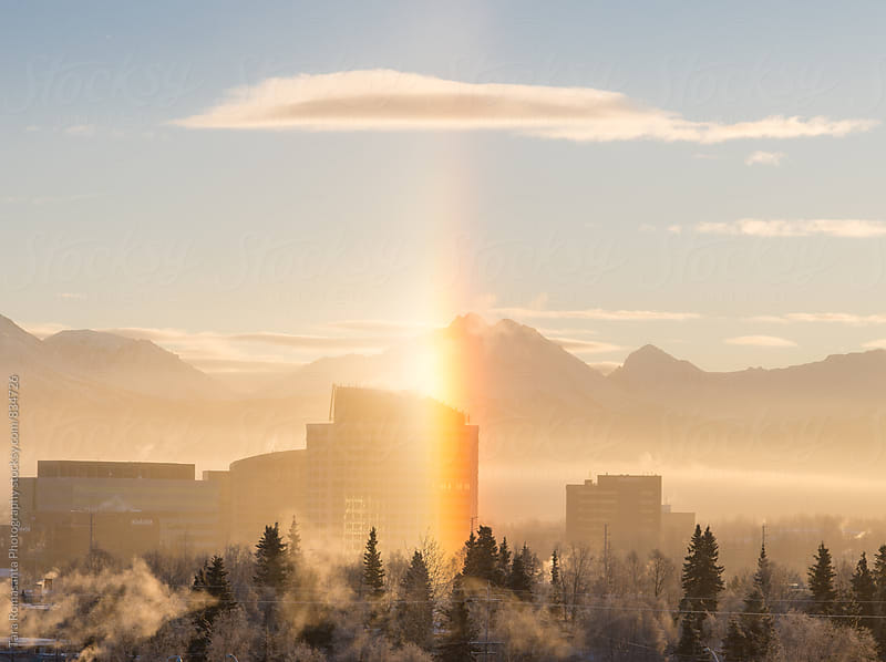 sundog on a foggy winter morning by Tara Romasanta for Stocksy United