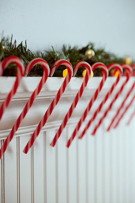 Holidays:  Line Of Decorative Candy Canes by Sean Locke for Stocksy United