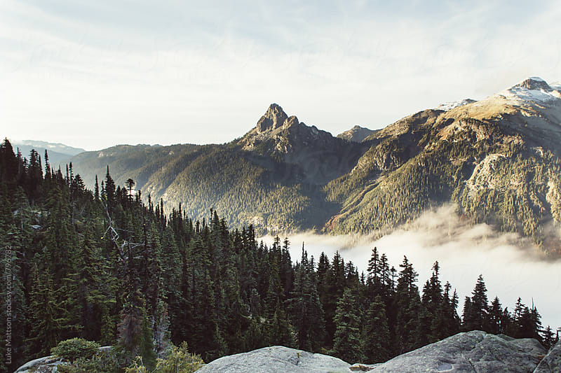 Mountain Peak Surrounded By Dark Green Subalpine Forest by Luke Mattson for Stocksy United