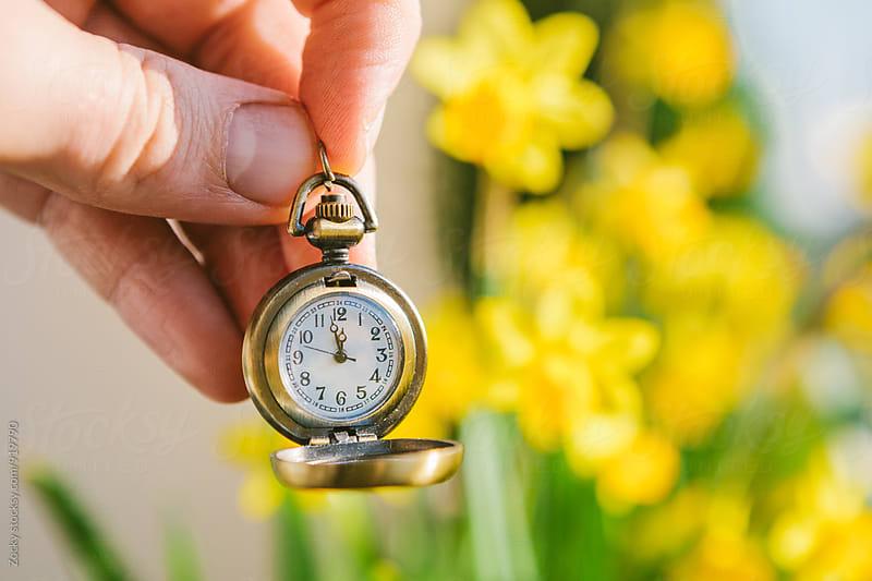 Spring Awakening by Zocky for Stocksy United