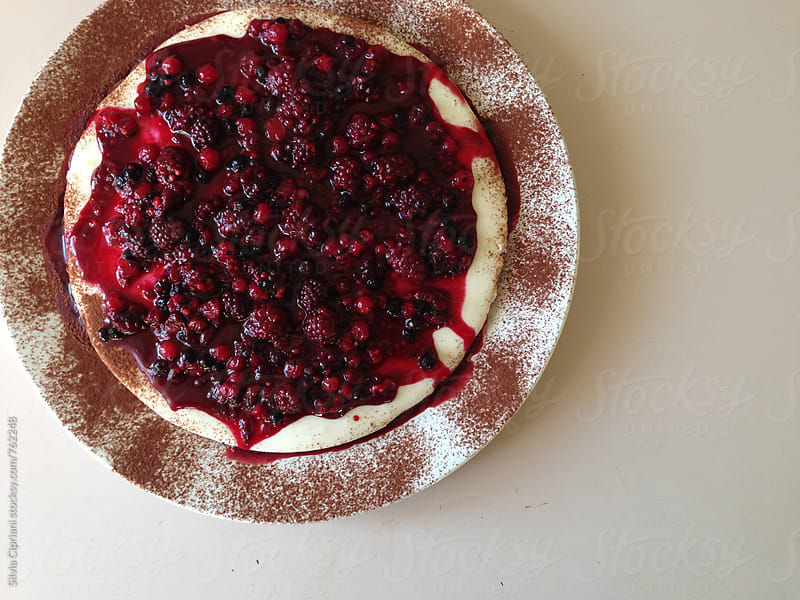 Cheesecake on a plate by Silvia Cipriani for Stocksy United