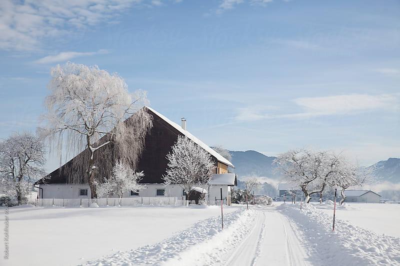 Snowy street in winter landscape in austria by Robert Kohlhuber for Stocksy United