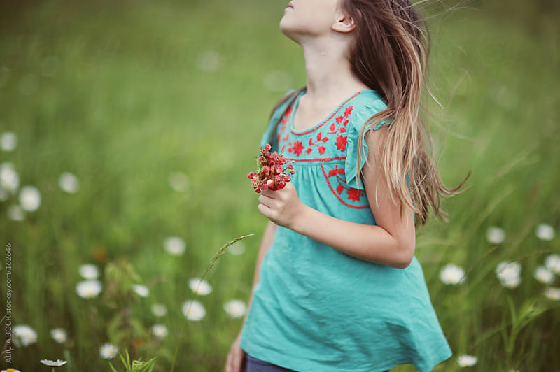 Field Of Wild Berries by ALICIA BOCK for Stocksy United