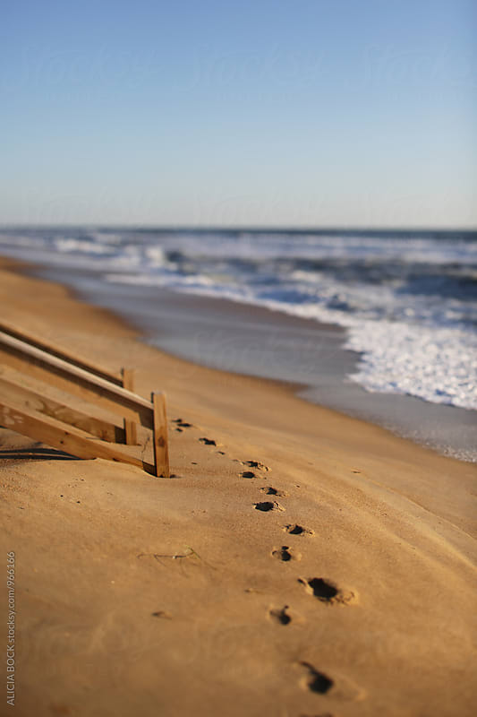 Footprints On The Beach On A Clear Morning by ALICIA BOCK for Stocksy United
