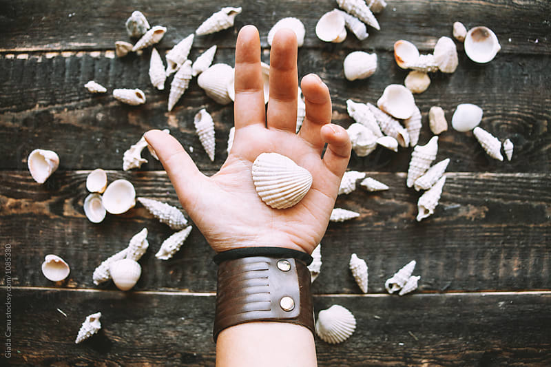 Hands holding a seashell by Giada Canu for Stocksy United