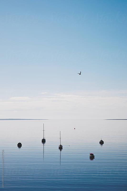 Yachts on Boston Bay. South Australia. by John White for Stocksy United