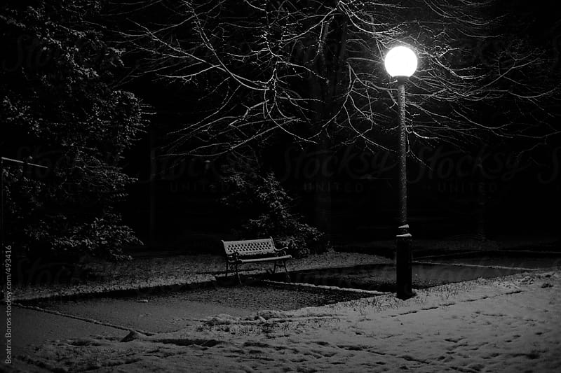 Tranquil scene of a winter landscape by night with a bench a lamp and snow by Beatrix Boros for Stocksy United