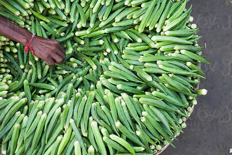 Thin hands of a farmer selling okra on the streets. by Shikhar Bhattarai for Stocksy United