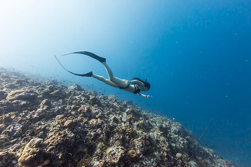 Freediving by Song Heming for Stocksy United
