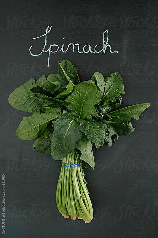 Spinach by CACTUS Blai Baules for Stocksy United