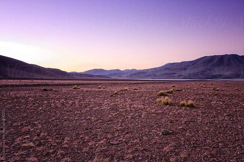 Dusk in the desert by Jon Attaway for Stocksy United