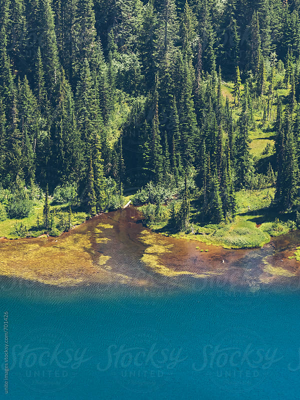 aerial scenic view of Reflection Lake, MT. Rainier by unite  images for Stocksy United