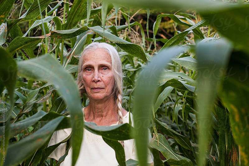 Elderly blonde woman with braids standing in corn field by J Danielle Wehunt for Stocksy United