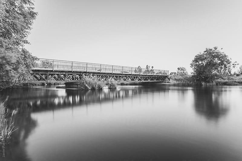 a bridge on the calm lake  by Javier Pardina for Stocksy United