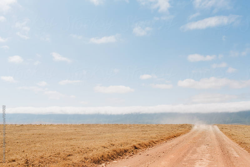 road through Ngorongoro Crater, Tanzania by Cameron Zegers for Stocksy United