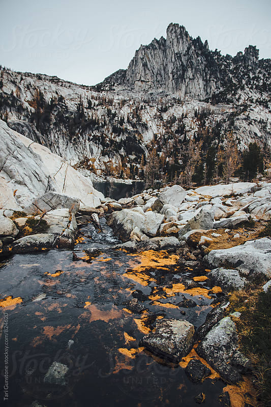 Rock peaks and blue stream with orange larch needles by Tari Gunstone for Stocksy United