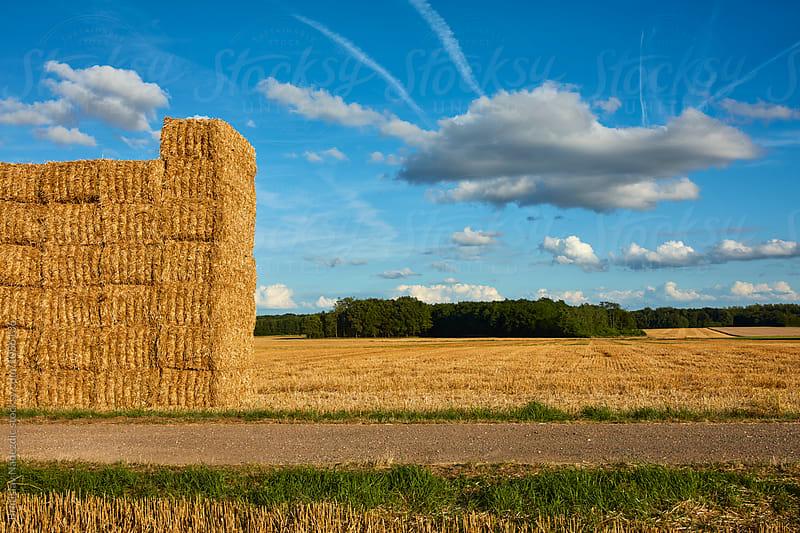 Bales of hay by Bratislav Nadezdic for Stocksy United