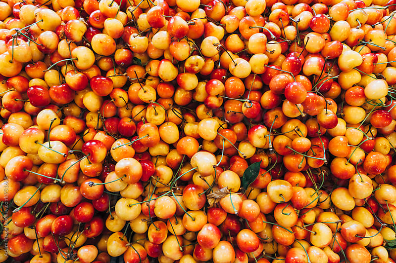 Fresh cherries at a farmers market by Adam Nixon for Stocksy United