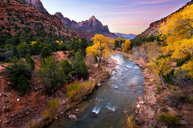 Zion National Park by Casey McCallister for Stocksy United