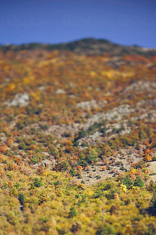 Pyrenees fall landscape.  by CACTUS Blai Baules for Stocksy United
