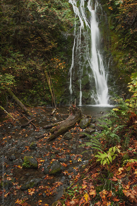 Madison Creek Falls by Nicholas Roberts for Stocksy United