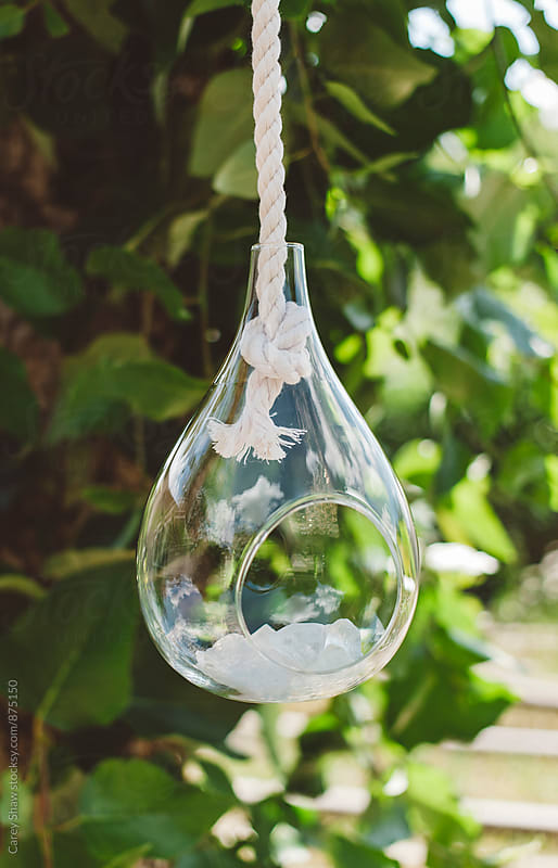 Glass teardrop hanging from tree by Carey Shaw for Stocksy United