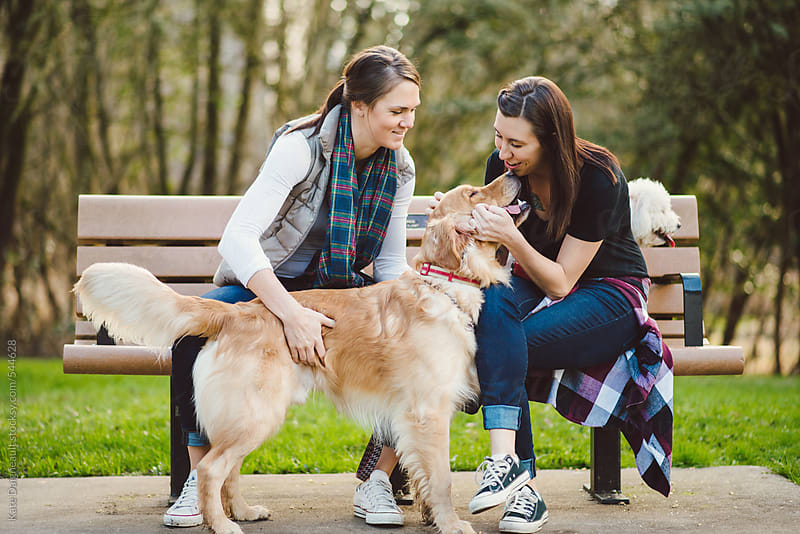 Married same sex couple with their dogs in the park. by Kate Daigneault for Stocksy United