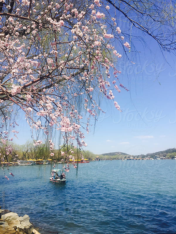 spring day at Summer Palace Beijing by Bo Bo for Stocksy United