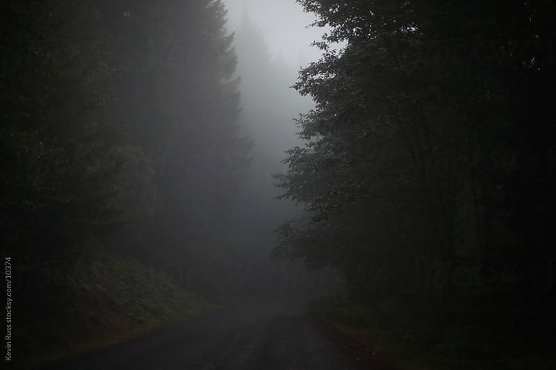Dark Forest Road by Kevin Russ for Stocksy United