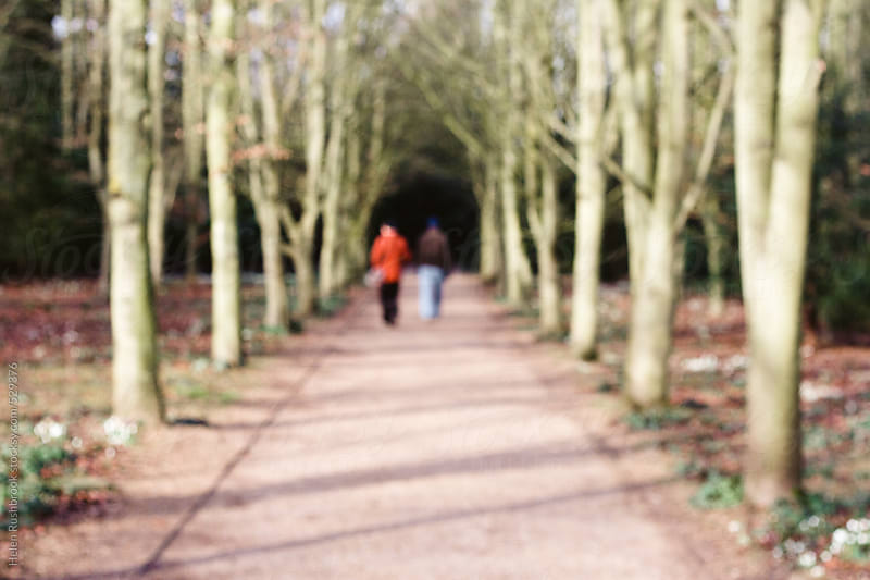 A deliberately blurred image of an avenue of trees and 2 people. by Helen Rushbrook for Stocksy United