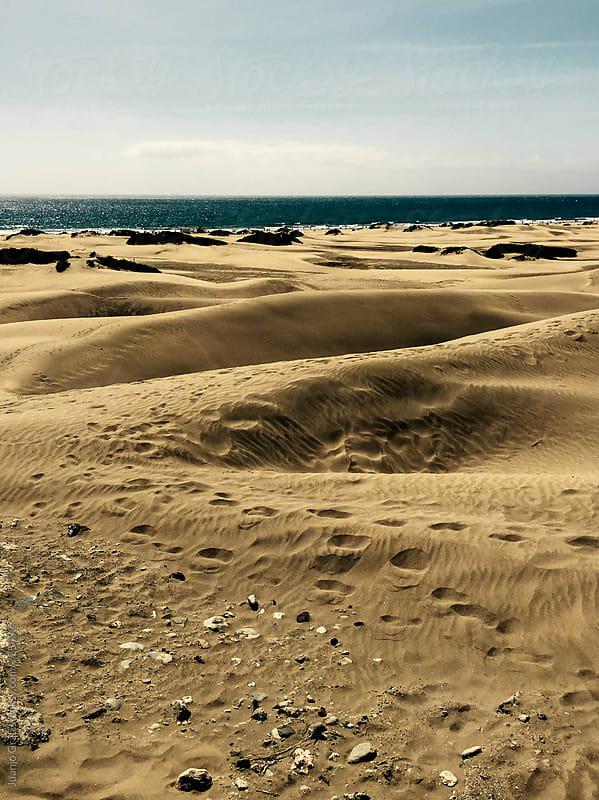 Dunes by Juanjo Grau for Stocksy United